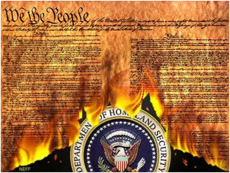 Image of the Constitution Burning in the name of Homeland Security