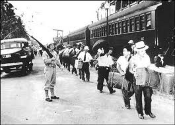 Japanese internment camps essay help?