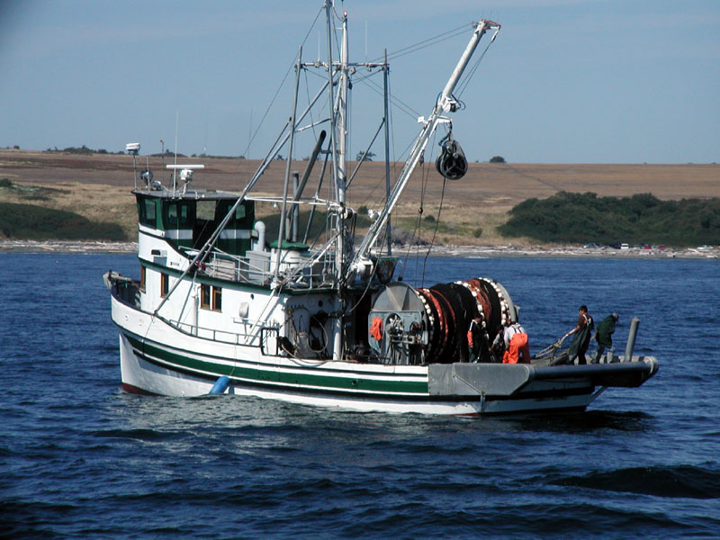 Fishing western japanese and islander perceptions of for Japanese fishing boat